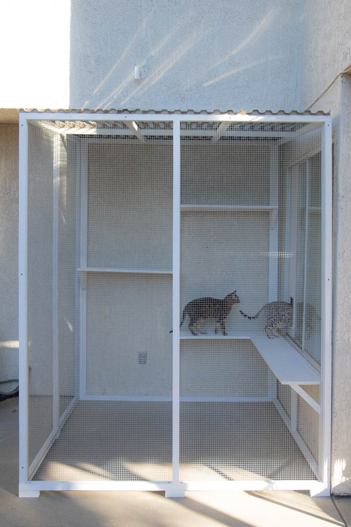 Catio Access Diying A Cat Door Insert For A Horizontal